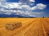 Balíky slamy a Liptovská krajina počas leta