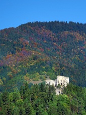 Ruiny hradu Likava v hustom lese