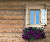 Okno drevenice s kvetmi