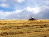 Traktor na žltom poli