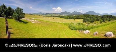 Panoráma od obce Bobrovník na Liptove