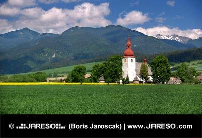 Zelené pole a starý kostol