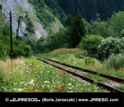 Stará železnica pri obci Podbieľ
