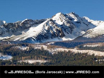 Vysoké Tatry a les počas zimy