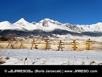 Vysoké Tatry a vetrolamy na lúke počas zimy