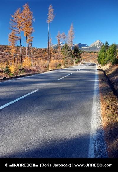 Cesta do Vysokých Tatier od mesta Štrba na jeseň