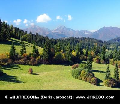 Malá Fatra a lesy nad obcou Jasenová