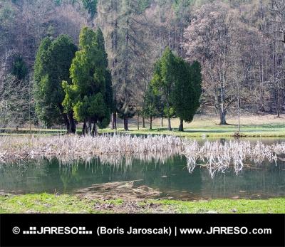 Park a jazero v Turčianskej Štiavničke