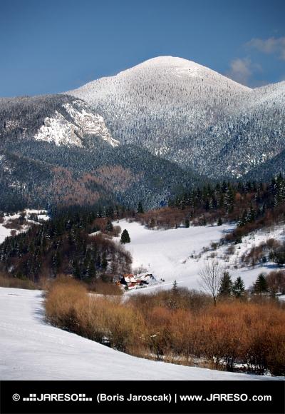 Choč a údolie v zime od Komjatnej