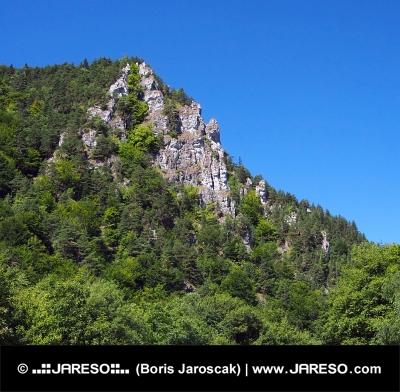 Masívne skaly v oblasti Kraľovianskeho meandra na Slovensku