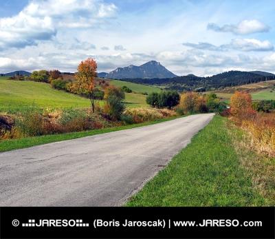 Cesta pri obci Bobrovník a vrchol Choč v diaľke