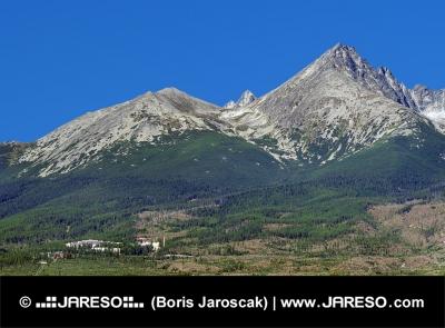 Končiare Vysokých Tatier v lete