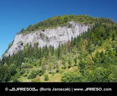 Bielska skala, Národná prírodná rezervácia na Orave