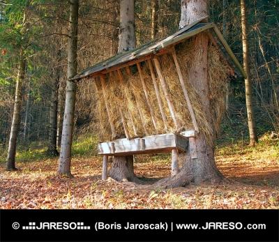 Kŕmidlo pripravené pre zvieratá v slovenskom lese