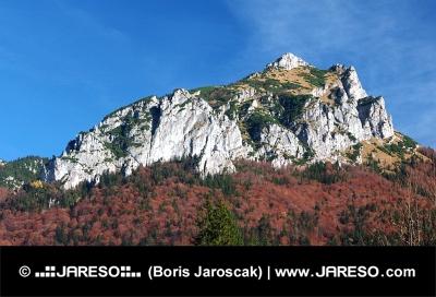 Jesenný pohľad na Veľký Rozsutec na Slovensku